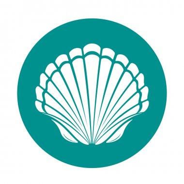 Scallop sea shell