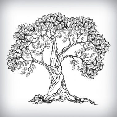 Hand drawn tree symbol isolated vector illustration stock vector