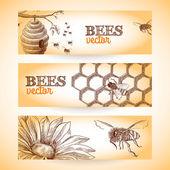 Fotografie Bee banner sketch