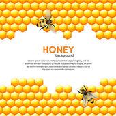 Fotografie Honey bee background