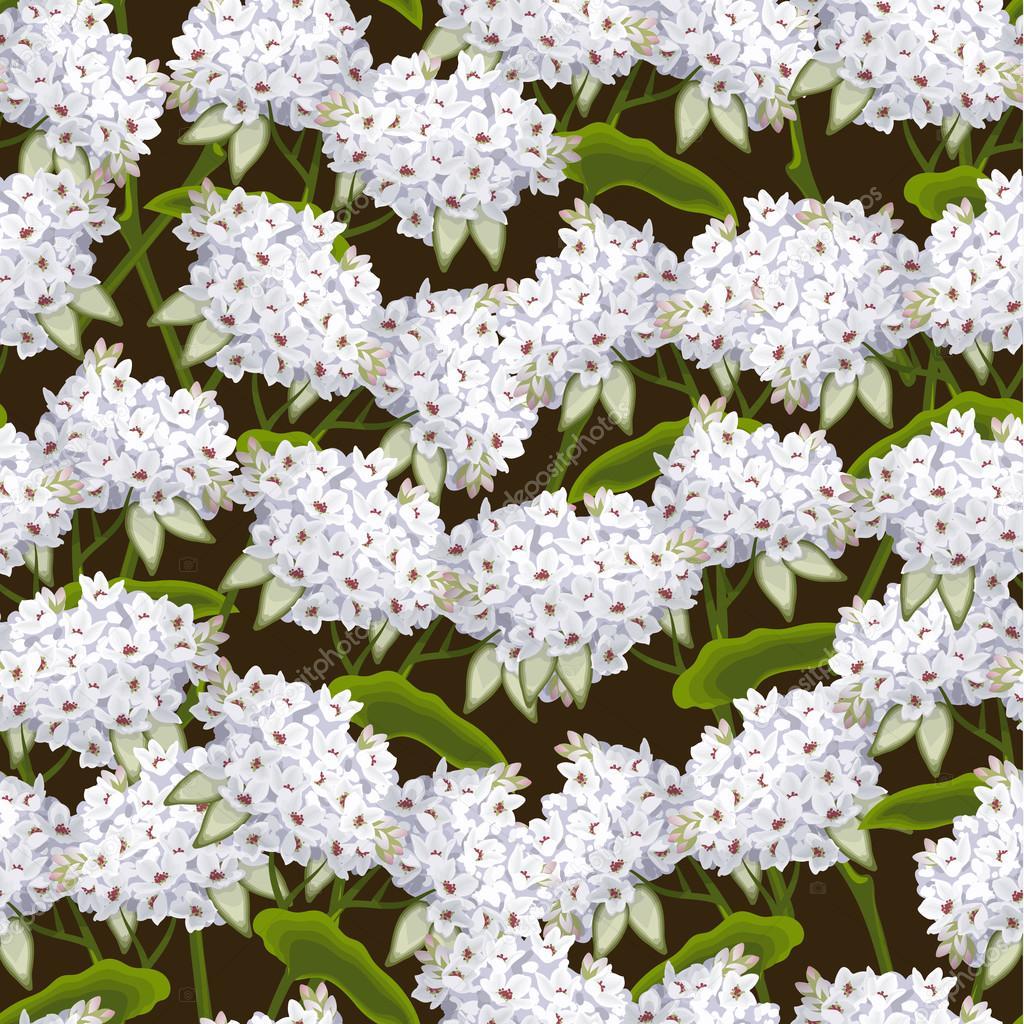 Buckwheat seamless background