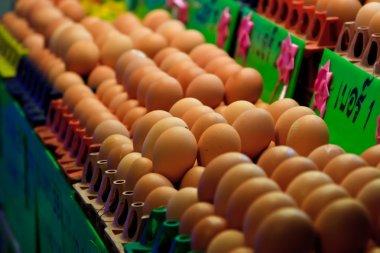Eggs in egg box in market stock vector