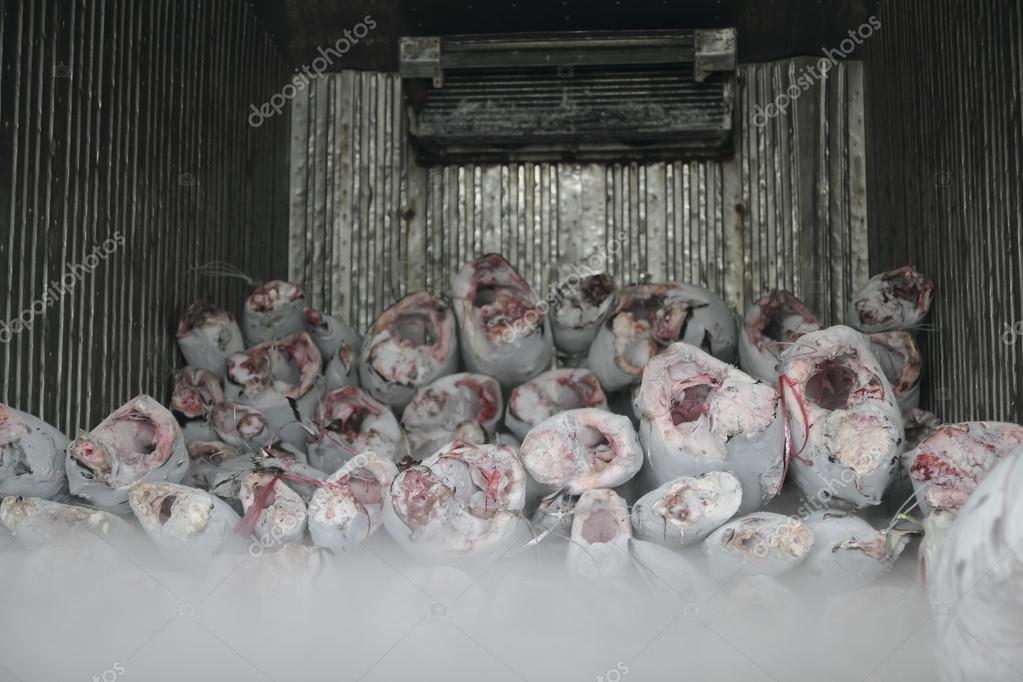 At n congelado foto de stock somkku 36797385 - Cocinar atun congelado ...