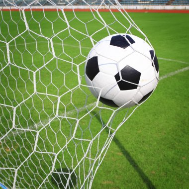 Soccer ball in goal with green grass