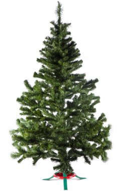 Christmas tree without decoration