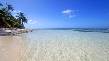 The island of paradise