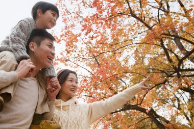 Family at the park in the autumn