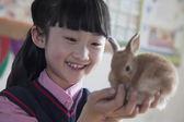 Fotografie μαθήτρια κρατώντας κατοικίδιο ζώο λαγόs στην τάξη