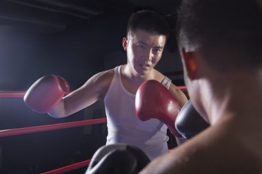 Two male boxers fighting in the boxing ring