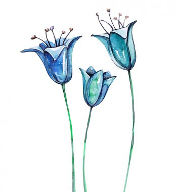 Watercolor blue bellflowers isolated on white background