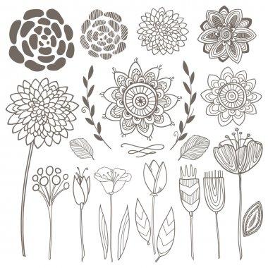 Vector hand drawn vintage floral elements. Set of flowers.