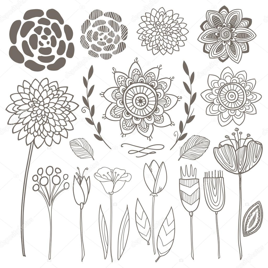 Vector hand drawn vintage floral elements. Set of flowers.