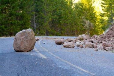Landslide Blocked Road