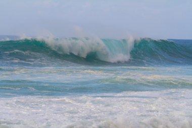 Big Waves at Pipeline Oahu