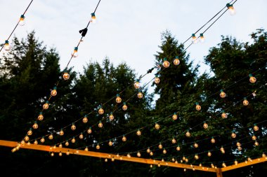 Hanging Strands of Lights