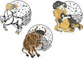 Fotografie Widder, Stier, Zwillinge Frauen und die Tierkreis sign.horoscope.stars