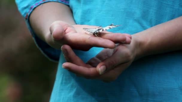 Držte ruku živých motýlů