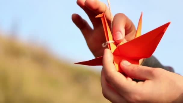 Origami, the art of origami
