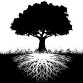Fa gyökerei sziluett