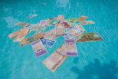 Fiat Coins Money Drowning Extinct