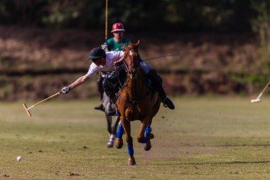 Horse Polo Game Action
