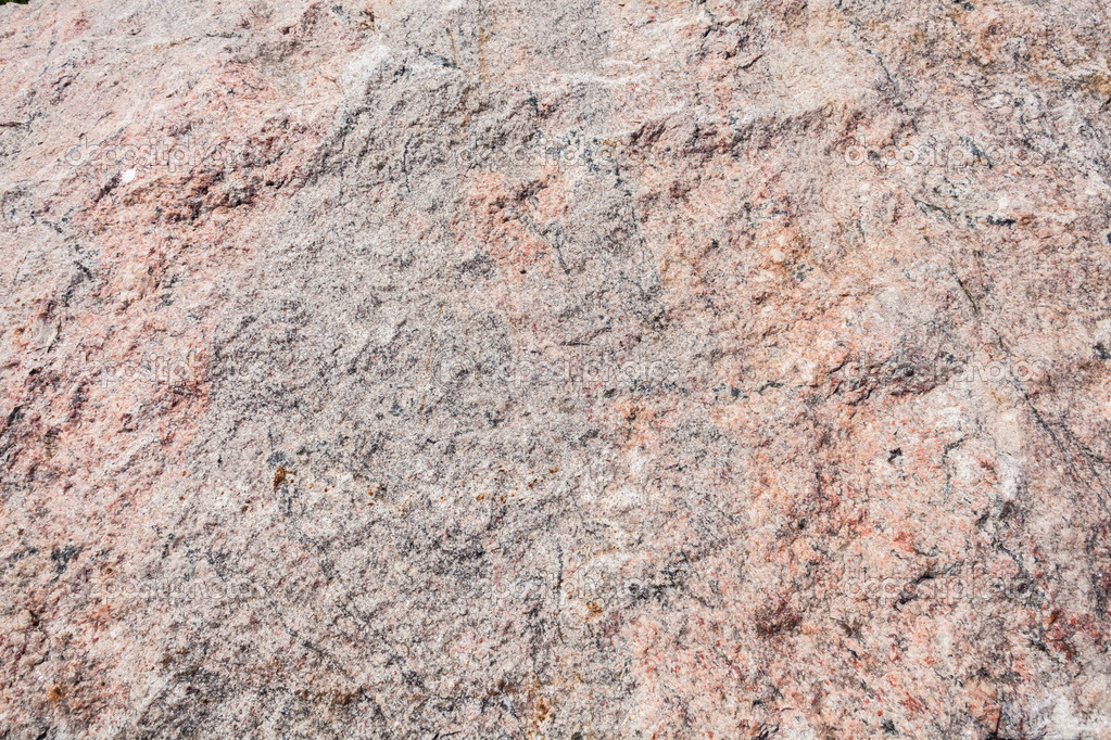 Granite Stone Cream White Colors Cut Slab With Its Fine Detailed Textures Photo By ChrisVanLennepPhoto