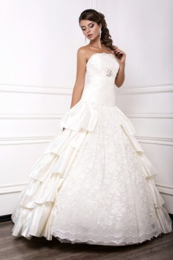 beautiful young bride in wedding dress