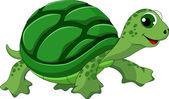 Fotografie roztomilá želva kreslená