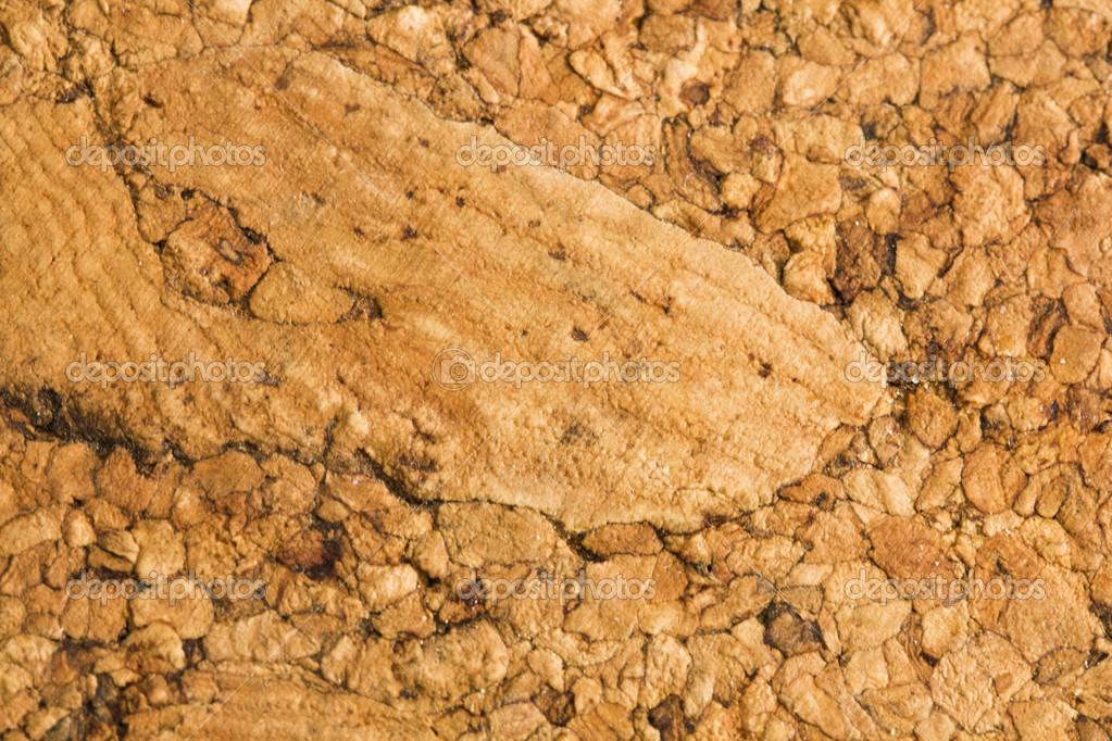 Cork texture background