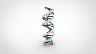 DNA double helix - White Solid