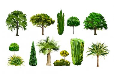 Realistic vector trees set