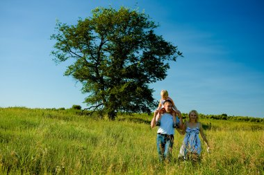 Happy family walks in the summer on the field