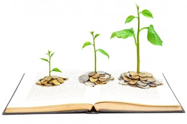 Trees growing from books with coins