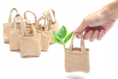 Hand picking up a cloth bag with a tree inside