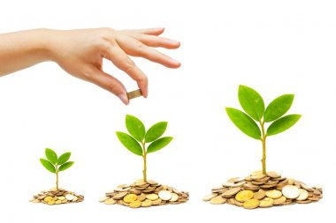 Hand giving a golden coin to a tree growing from pile of coins