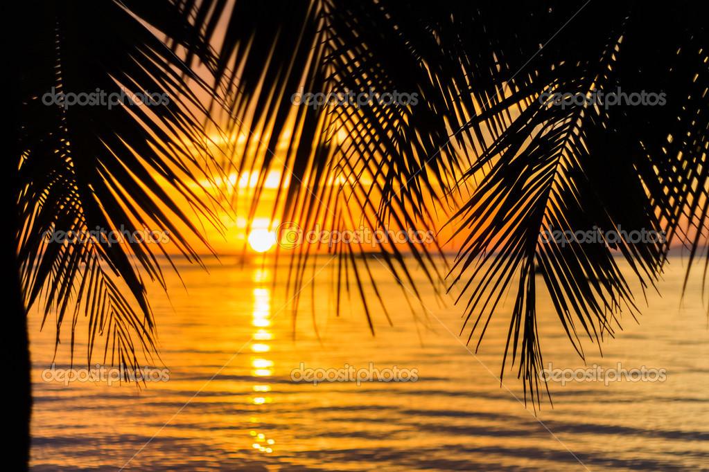 Background: sunset beach | Sunset beach background — Stock