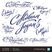 Photo New Year greetings hand lettering set 1 (vector)