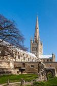 Norwich-székesegyház