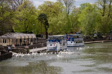 Tourist boats moored on River Thames near Eton Bridge at Windsor