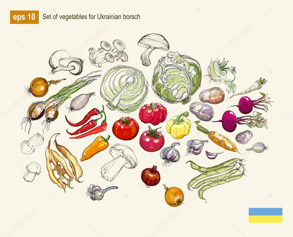 realistic vector hand drawing set of vegetables