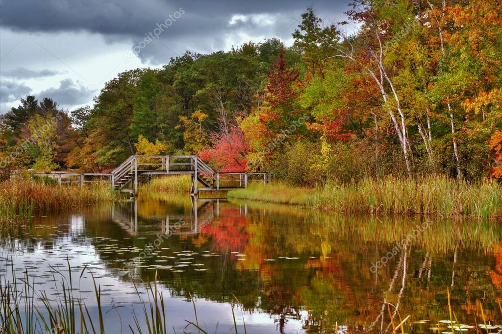Wooden Bridge Reflections