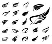 Fotografie φτερά φορέα που