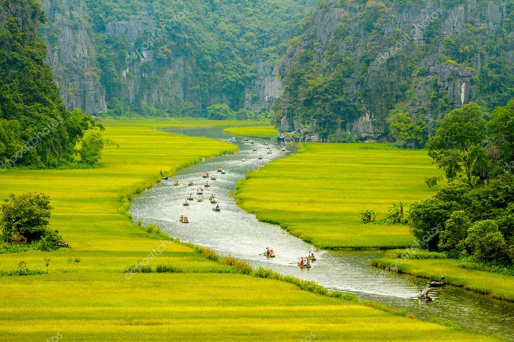 Stream inside rice fields in Tam Coc Natural Preserve, Vietnam