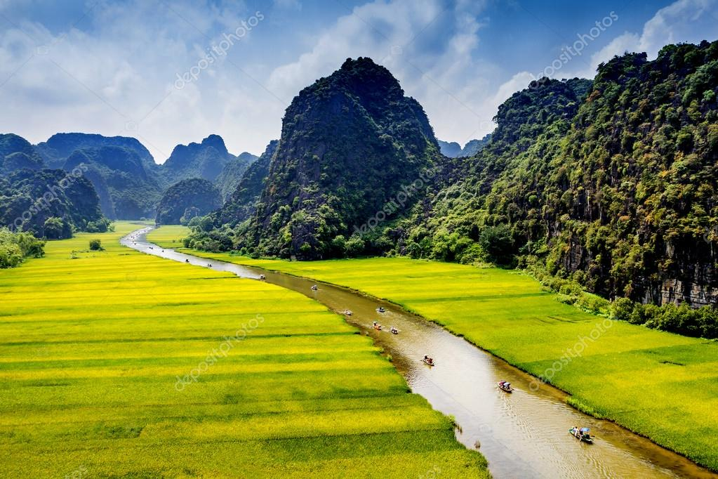 Scenery of rice fields with a stream inside