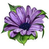 Krásný Fialový květ