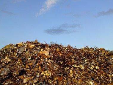 Golden scrap