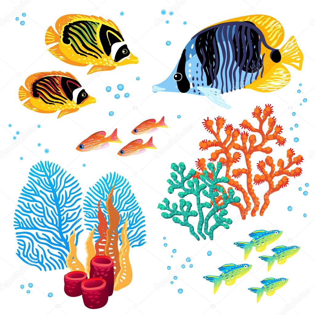 Colorful vector set of tropical fishes and corals