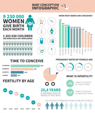 Baby conception infographic
