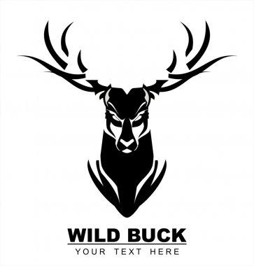 Elegant Staring Black Buck.