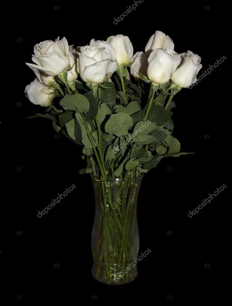 White long stemmed roses in clear glass vase isolated on black several beautiful long stemmed white roses in a clear glass vase isolated on a black background great image to use for valentines day anniversaries mightylinksfo Image collections
